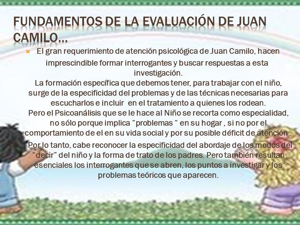 El gran requerimiento de atención psicológica de Juan Camilo, hacen imprescindible formar interrogantes y buscar respuestas a esta investigación.