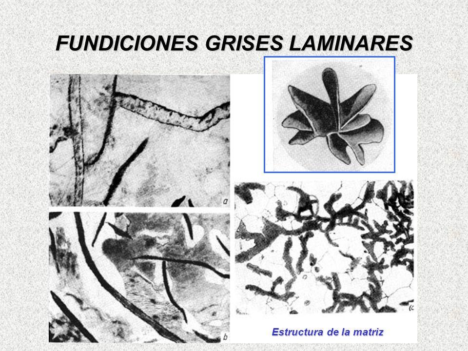 FUNDICIONES GRISES LAMINARES Estructura de la matriz