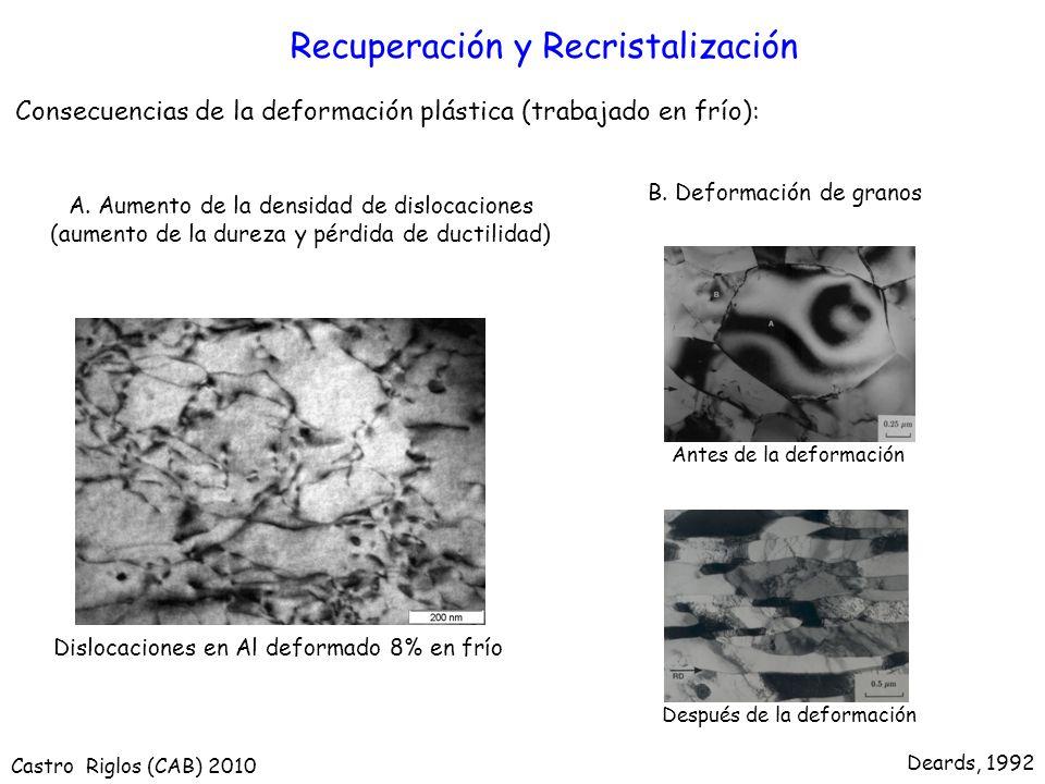 Recuperación y Recristalización Consecuencias de la deformación plástica (trabajado en frío): Dislocaciones en Al deformado 8% en frío Deards, 1992 An