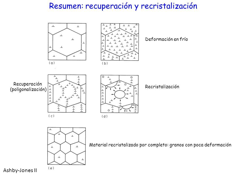 Resumen: recuperación y recristalización Deformación en frío Recuperación (poligonalización) Recristalización Material recristalizado por completo: gr