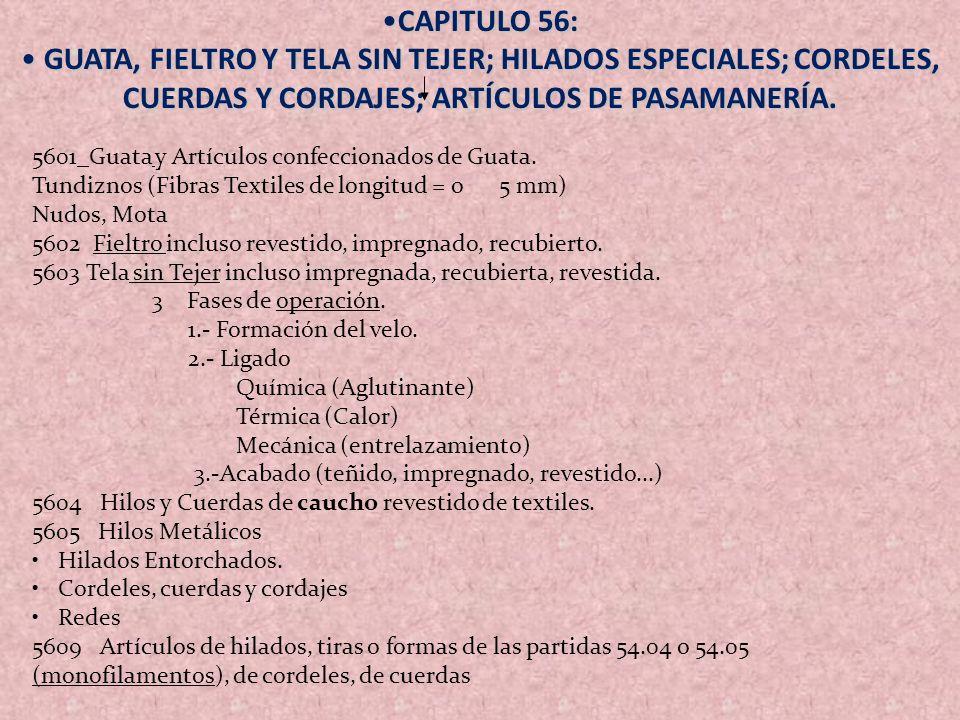 CAPITULO 56:CAPITULO 56: GUATA, FIELTRO Y TELA SIN TEJER; HILADOS ESPECIALES; CORDELES, CUERDAS Y CORDAJES; ARTÍCULOS DE PASAMANERÍA. GUATA, FIELTRO Y