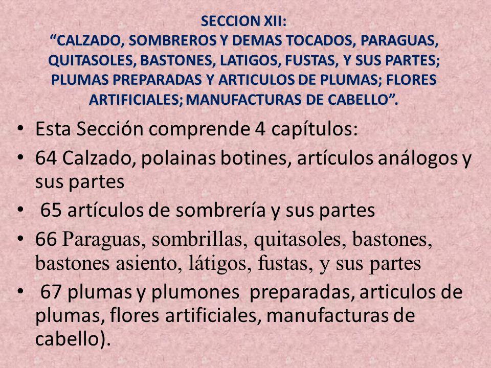 SECCION XII: CALZADO, SOMBREROS Y DEMAS TOCADOS, PARAGUAS, QUITASOLES, BASTONES, LATIGOS, FUSTAS, Y SUS PARTES; PLUMAS PREPARADAS Y ARTICULOS DE PLUMA