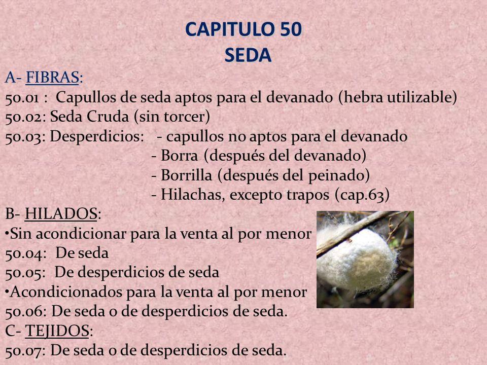 CAPÍTULO 57: ALFOMBRAS Y DEMÁS REVESTIMIENTOS PARA EL SUELO, DE MATERIAL TEXTIL.