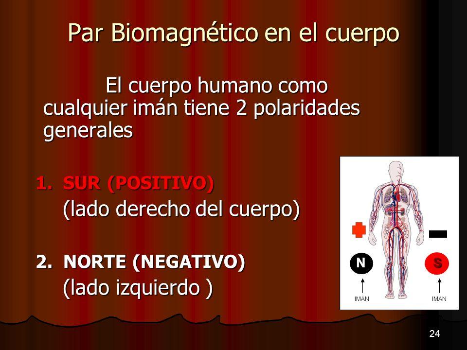 Par Biomagnético en el cuerpo El cuerpo humano como cualquier imán tiene 2 polaridades generales 1. SUR (POSITIVO) (lado derecho del cuerpo) (lado der