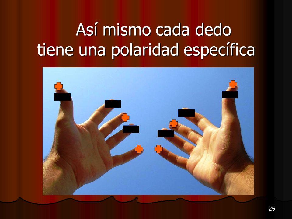 Así mismo cada dedo tiene una polaridad específica 25