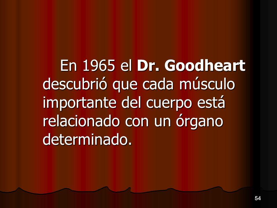 En 1965 el Dr. Goodheart descubrió que cada músculo importante del cuerpo está relacionado con un órgano determinado. 54