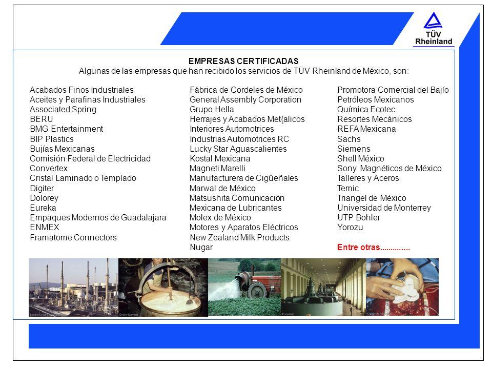 TÜV Rheinland de México, S.A de C.V. TÜV Rheinland de México, se constituyó en 1993 para cubrir la demanda de servicios técnicos profesionales con rec