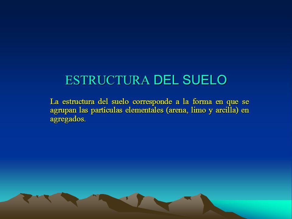 ESTRUCTURA DEL SUELO La estructura del suelo corresponde a la forma en que se agrupan las partículas elementales (arena, limo y arcilla) en agregados.