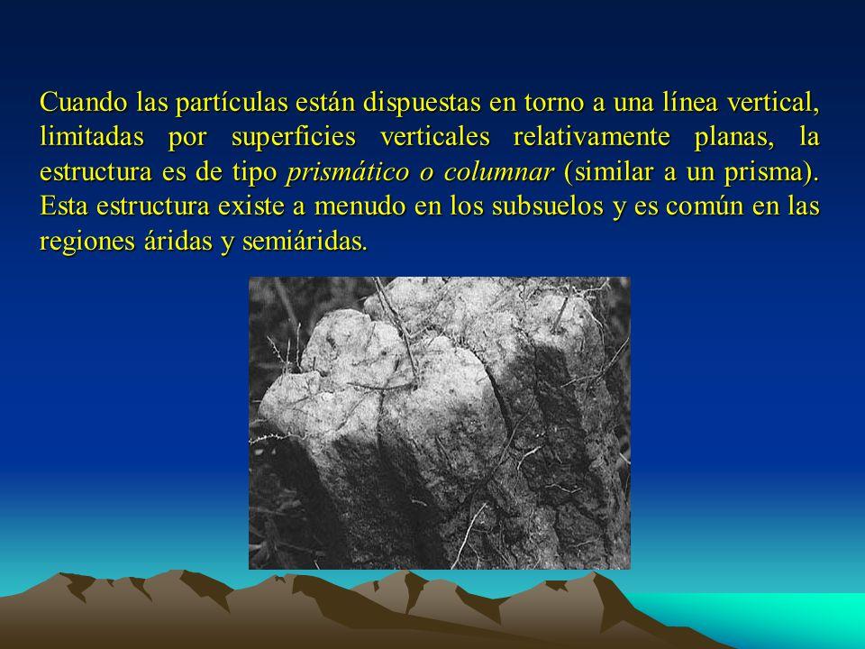 Cuando las partículas están dispuestas en torno a una línea vertical, limitadas por superficies verticales relativamente planas, la estructura es de t
