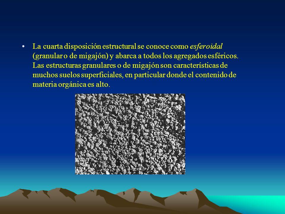 La cuarta disposición estructural se conoce como esferoidal (granular o de migajón) y abarca a todos los agregados esféricos. Las estructuras granular