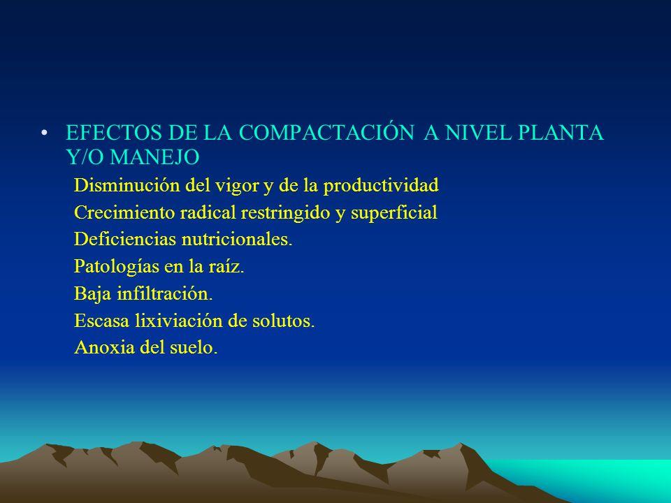 EFECTOS DE LA COMPACTACIÓN A NIVEL PLANTA Y/O MANEJO Disminución del vigor y de la productividad Crecimiento radical restringido y superficial Deficie