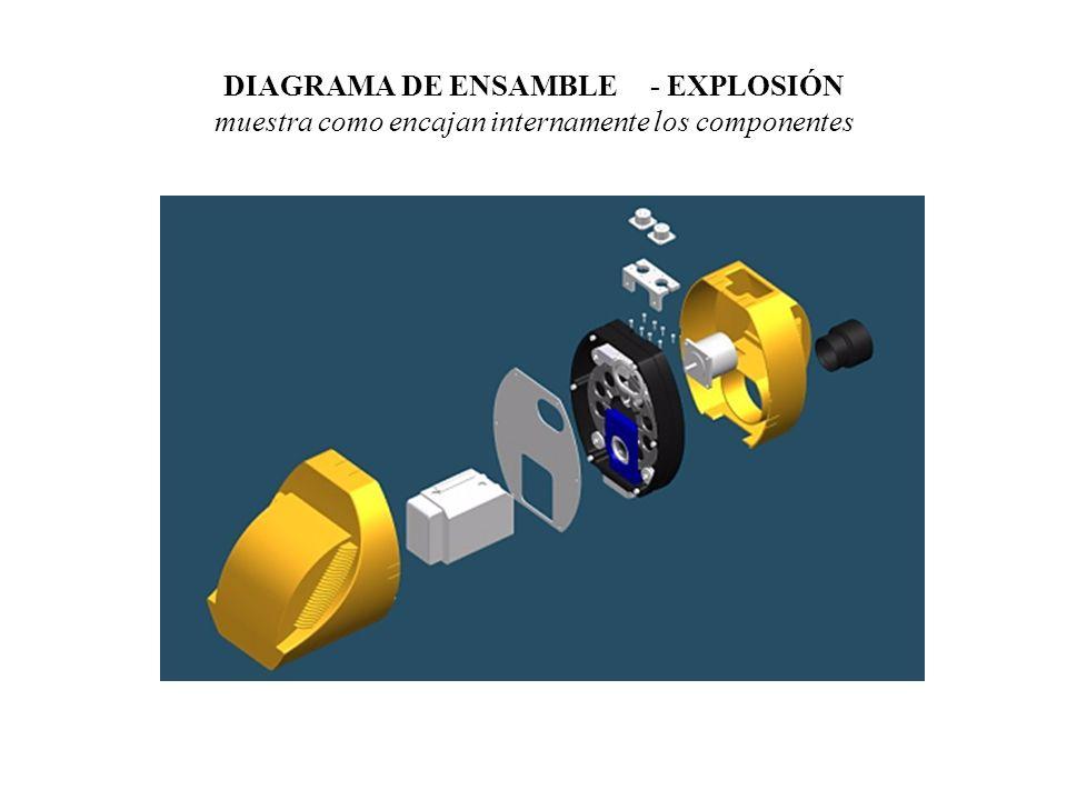 DIBUJO DE SECCION muestra como encajan internamente los componentes Vista frontal seccionada