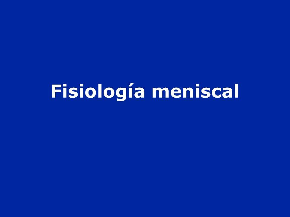Fisiología meniscal