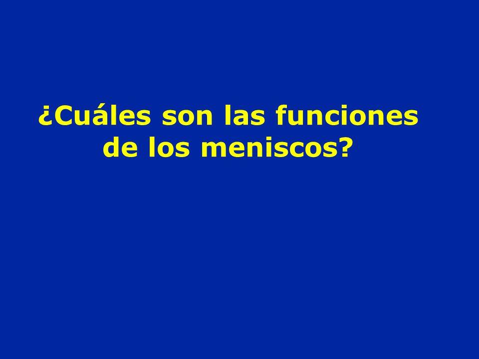 ¿Cuáles son las funciones de los meniscos?