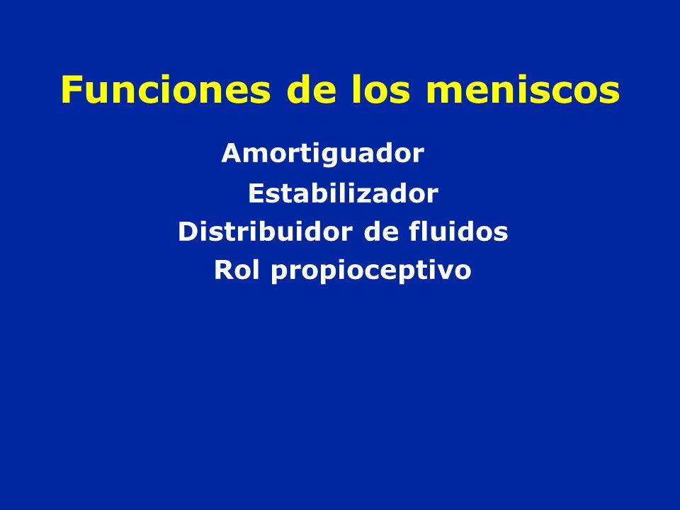 Funciones de los meniscos Amortiguador Estabilizador Distribuidor de fluidos Rol propioceptivo