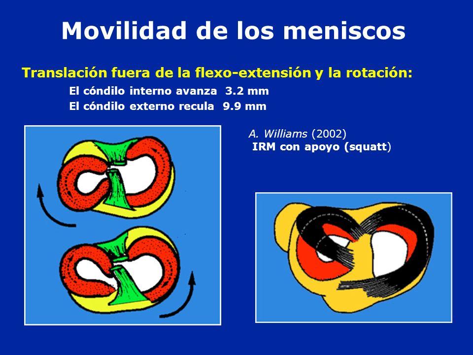 A. Williams (2002) IRM con apoyo (squatt) Translación fuera de la flexo-extensión y la rotación: El cóndilo interno avanza 3.2 mm El cóndilo externo r