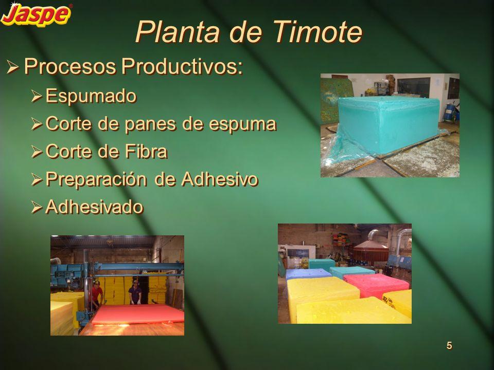 Planta de Timote Procesos Productivos: Espumado Corte de panes de espuma Corte de Fibra Preparación de Adhesivo Adhesivado Procesos Productivos: Espum