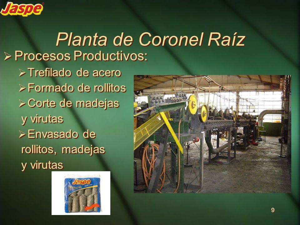 Planta de Coronel Raíz Procesos Productivos: Trefilado de acero Formado de rollitos Corte de madejas y virutas Envasado de rollitos, madejas y virutas