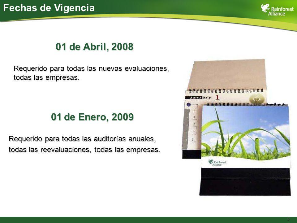 5 Fechas de Vigencia 01 de Abril, 2008 Requerido para todas las nuevas evaluaciones, todas las empresas. 01 de Enero, 2009 Requerido para todas las au