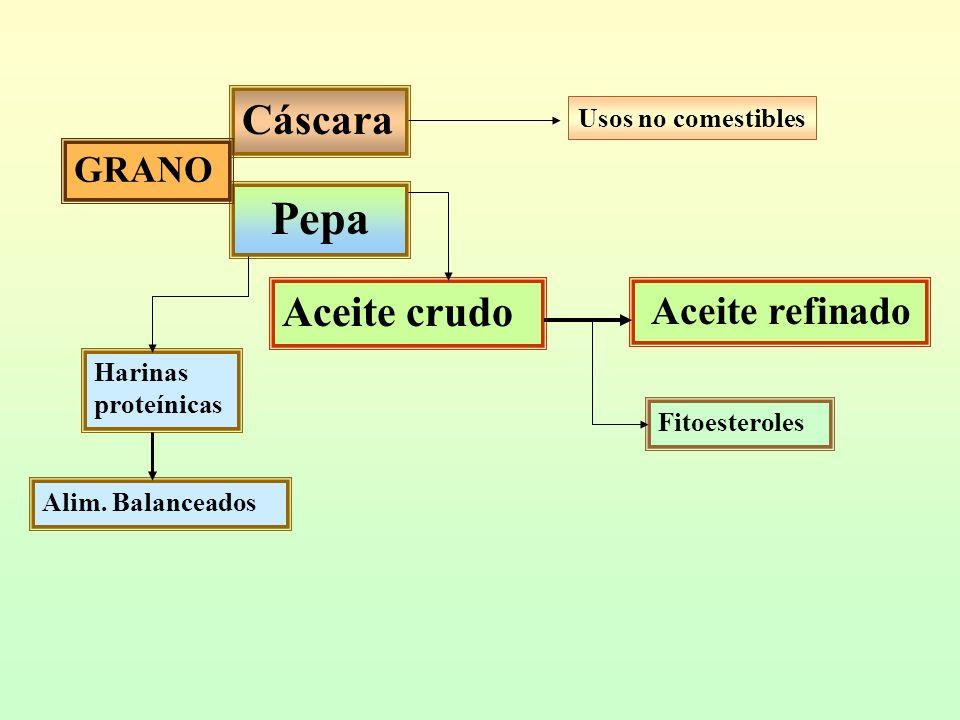 Composición de tocoferoles, mg/kg = ppm expresados sobre el aceite, valores medios Actividad como Vit E Actividad antiox aceite Alfa - Beta - Gama - Delta The Lipid Handbook, 2ª ed, Chapman and Hall, London, 1994 / Analysis of Oilseeds, Fats, and Fatty Food, Elsevier, London, 1991 GirasolSojaMaizOlivaManí Total5461153783126365 Alfa48775112119130 Beta-1550-- Gama51797602-214 Delta826619-21 Como Vit E492171198120152