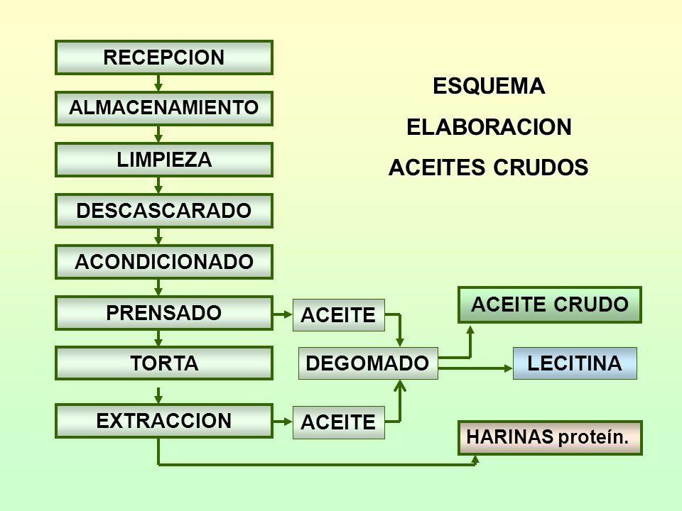 Aceite de oliva Clasificación internacional Virgen extra : acidez máx.