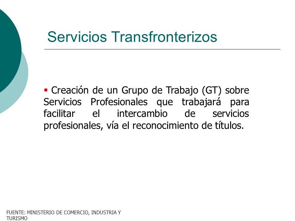 Creación de un Grupo de Trabajo (GT) sobre Servicios Profesionales que trabajará para facilitar el intercambio de servicios profesionales, vía el reco