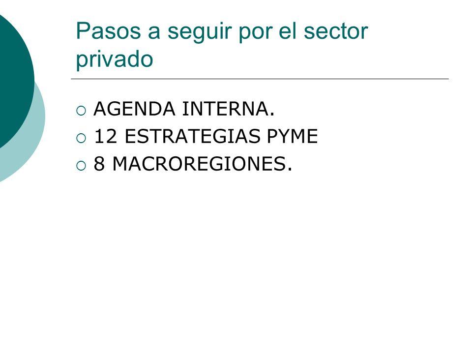 Pasos a seguir por el sector privado AGENDA INTERNA. 12 ESTRATEGIAS PYME 8 MACROREGIONES.