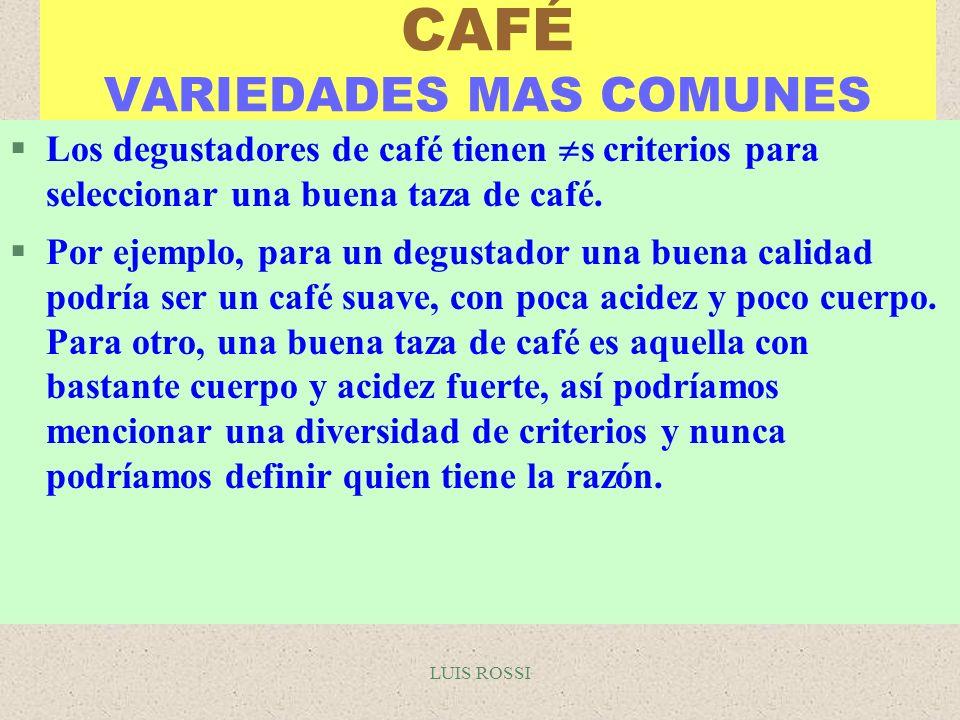 LUIS ROSSI CAFÉ VARIEDADES MAS COMUNES §Los degustadores de café tienen s criterios para seleccionar una buena taza de café. §Por ejemplo, para un deg