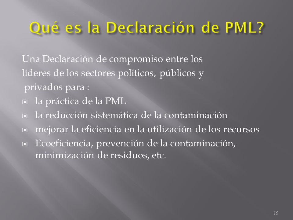 Una Declaración de compromiso entre los líderes de los sectores políticos, públicos y privados para : la práctica de la PML la reducción sistemática d