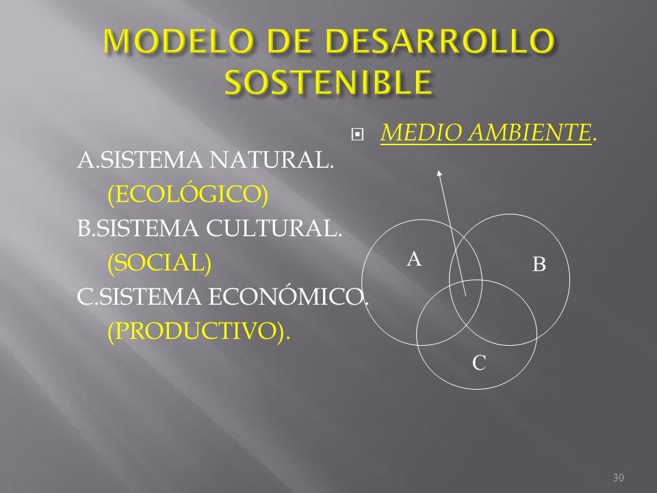 A.SISTEMA NATURAL. (ECOLÓGICO) B.SISTEMA CULTURAL. (SOCIAL) C.SISTEMA ECONÓMICO. (PRODUCTIVO). MEDIO AMBIENTE. A B C 30