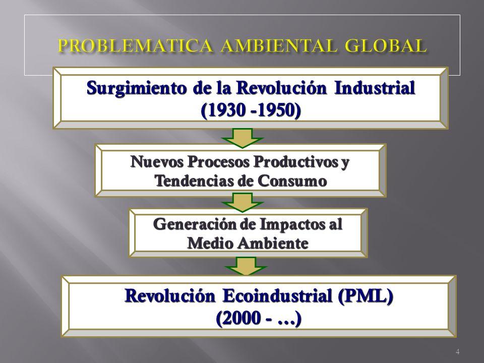 Surgimiento de la Revolución Industrial (1930 -1950) Nuevos Procesos Productivos y Tendencias de Consumo Generación de Impactos al Medio Ambiente Revo