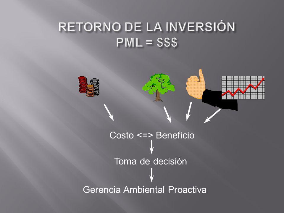 Costo Beneficio Gerencia Ambiental Proactiva Toma de decisión