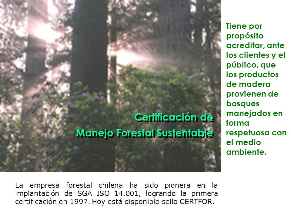 La empresa forestal chilena ha sido pionera en la implantación de SGA ISO 14.001, logrando la primera certificación en 1997.