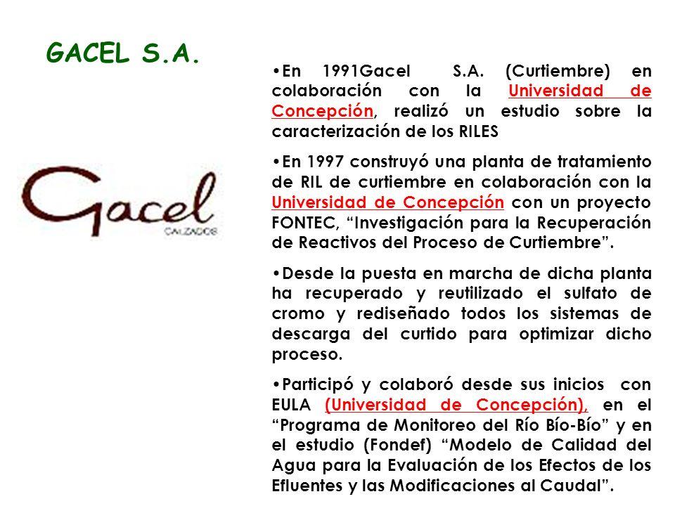 En 1991Gacel S.A.