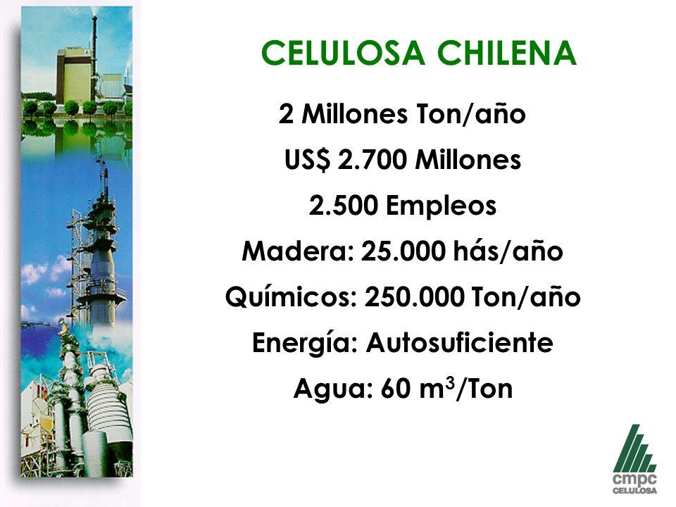 2 Millones Ton/año US$ 2.700 Millones 2.500 Empleos Madera: 25.000 hás/año Químicos: 250.000 Ton/año Energía: Autosuficiente Agua: 60 m 3 /Ton CELULOSA CHILENA