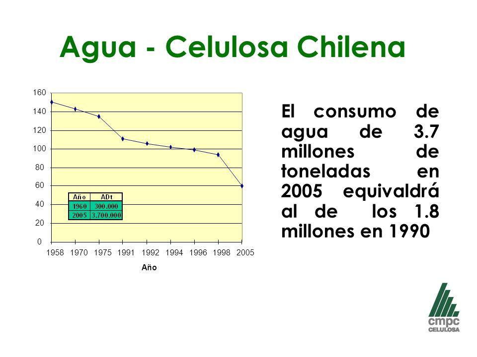 Agua - Celulosa Chilena El consumo de agua de 3.7 millones de toneladas en 2005 equivaldrá al de los 1.8 millones en 1990 2005 0 20 40 60 80 100 120 140 160 19581970197519911992199419961998 Año