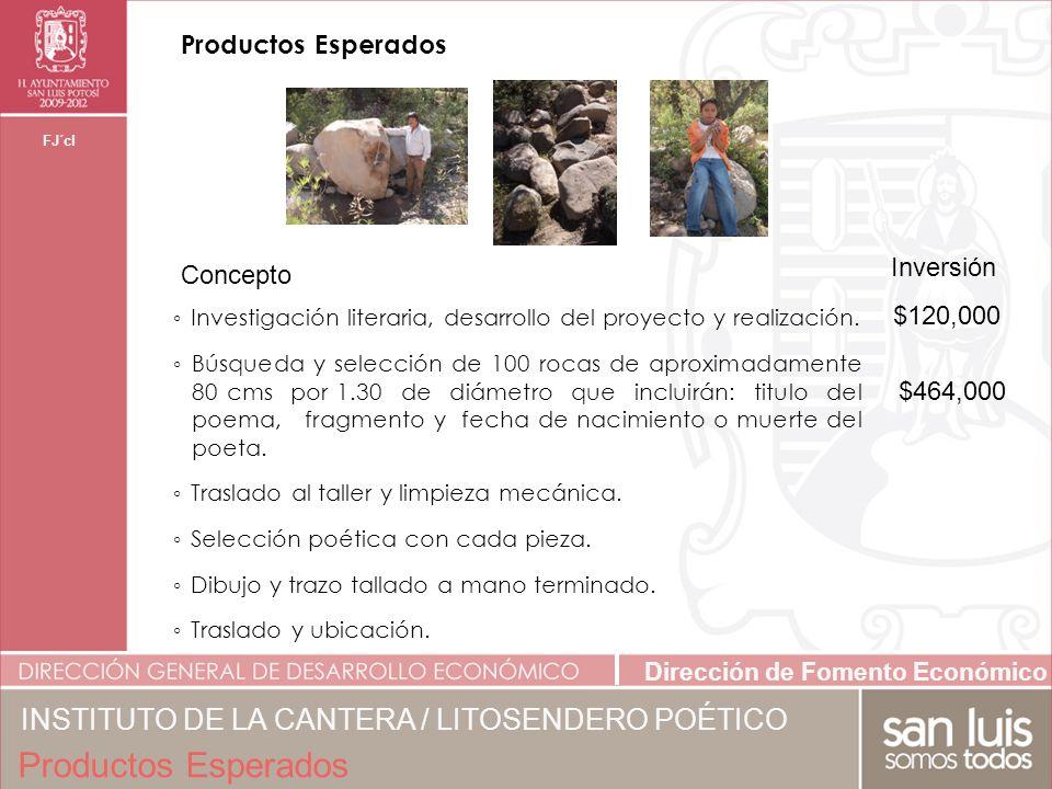 Dirección de Fomento Económico FJ´cl Inversión Video, DVD y libro fotográfico con textos.