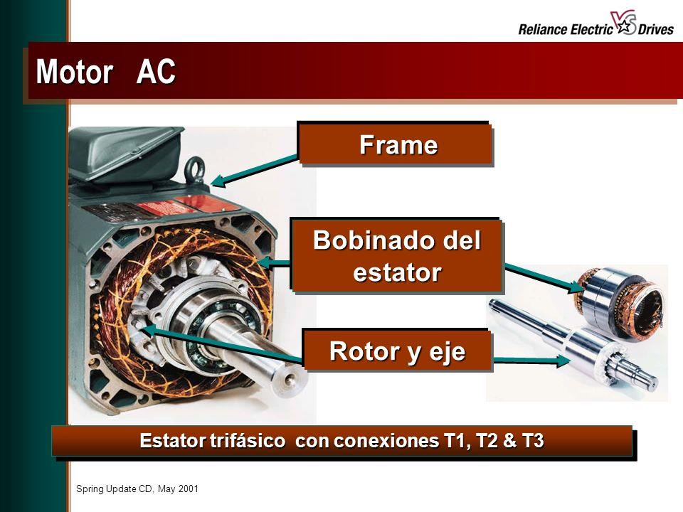 Spring Update CD, May 2001 Estator trifásico con conexiones T1, T2 & T3 Motor AC Frame Frame Rotor y eje Bobinado del estator