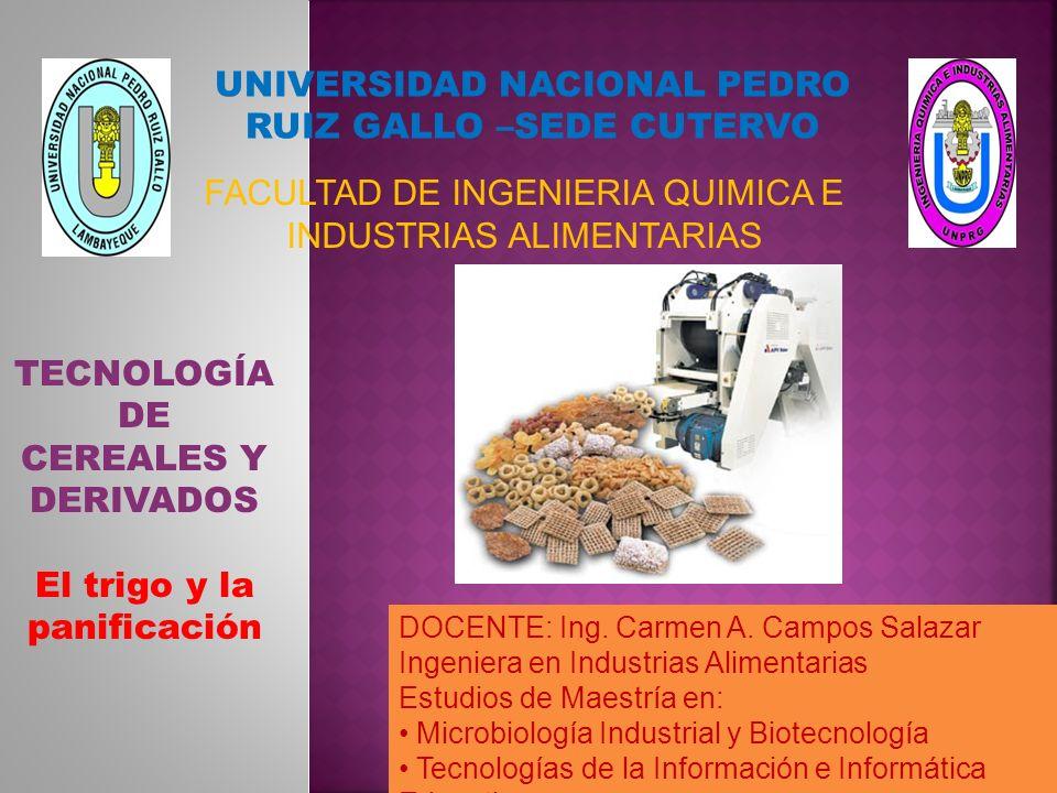 TRIGO (Triticum sp.) T.aestivum : trigo harinero panificable T.