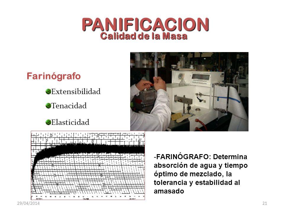 Calidad de la Masa Farinógrafo Extensibilidad Tenacidad Elasticidad PANIFICACION -FARINÓGRAFO: Determina absorción de agua y tiempo óptimo de mezclado