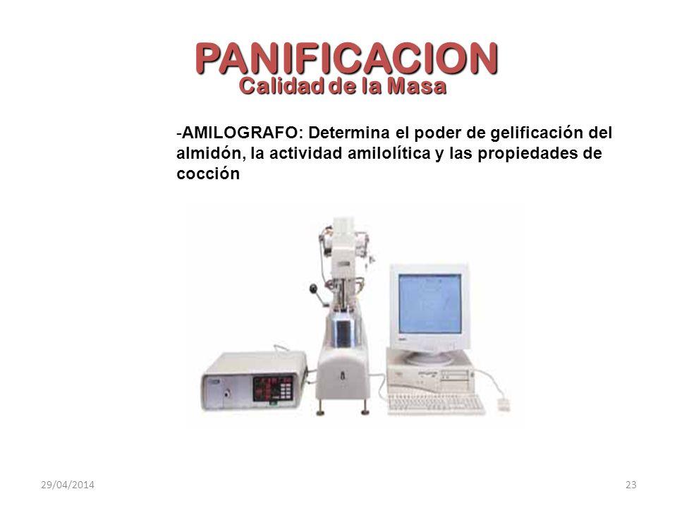 -AMILOGRAFO: Determina el poder de gelificación del almidón, la actividad amilolítica y las propiedades de cocción Calidad de la Masa PANIFICACION 29/