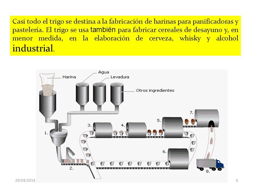 Prueba de panificación Extensógrafo PANIFICACION Calidad de la Masa 29/04/201427