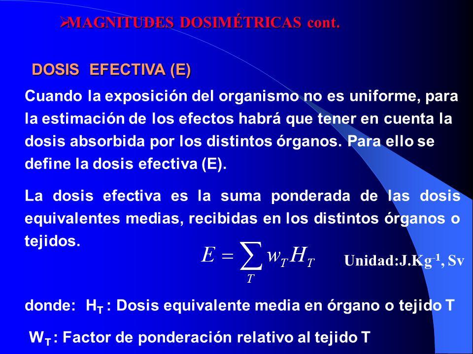 Cuando la exposición del organismo no es uniforme, para la estimación de los efectos habrá que tener en cuenta la dosis absorbida por los distintos ór