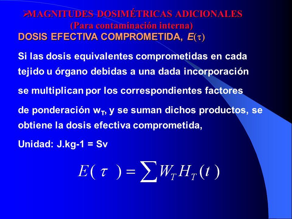 DOSIS EFECTIVA COMPROMETIDA, E Si las dosis equivalentes comprometidas en cada tejido u órgano debidas a una dada incorporación se multiplican por los
