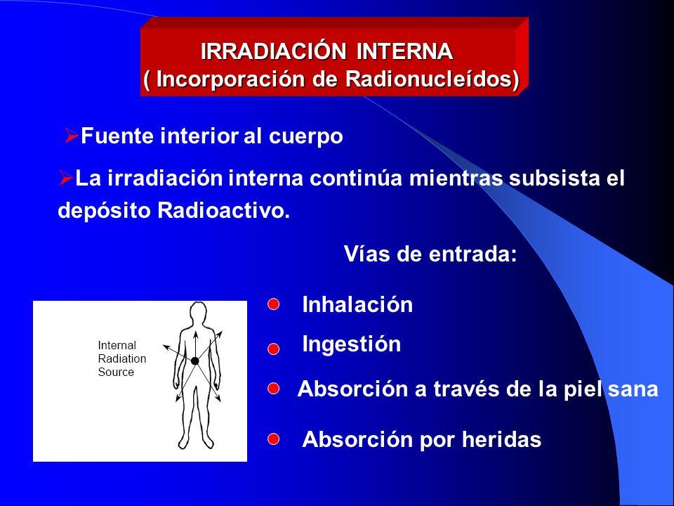 IRRADIACIÓN INTERNA ( Incorporación de Radionucleídos) La irradiación interna continúa mientras subsista el depósito Radioactivo. Fuente interior al c