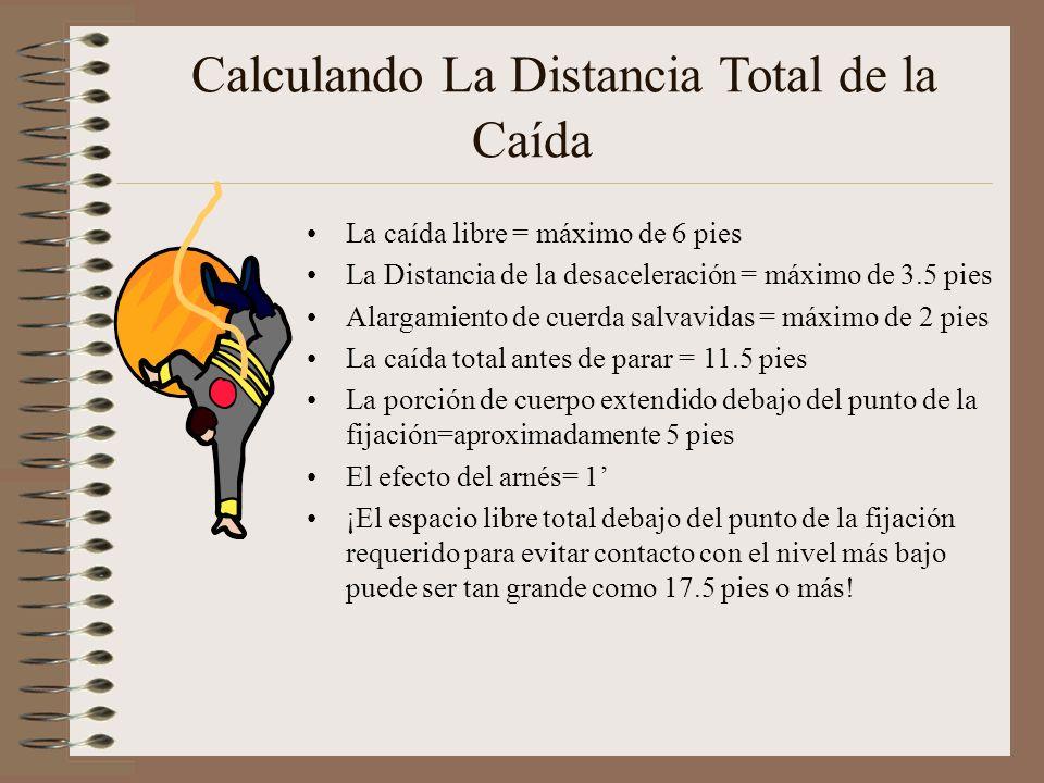 Calculando La Distancia Total de la Caída La caída libre = máximo de 6 pies La Distancia de la desaceleración = máximo de 3.5 pies Alargamiento de cuerda salvavidas = máximo de 2 pies La caída total antes de parar = 11.5 pies La porción de cuerpo extendido debajo del punto de la fijación=aproximadamente 5 pies El efecto del arnés= 1 ¡El espacio libre total debajo del punto de la fijación requerido para evitar contacto con el nivel más bajo puede ser tan grande como 17.5 pies o más!
