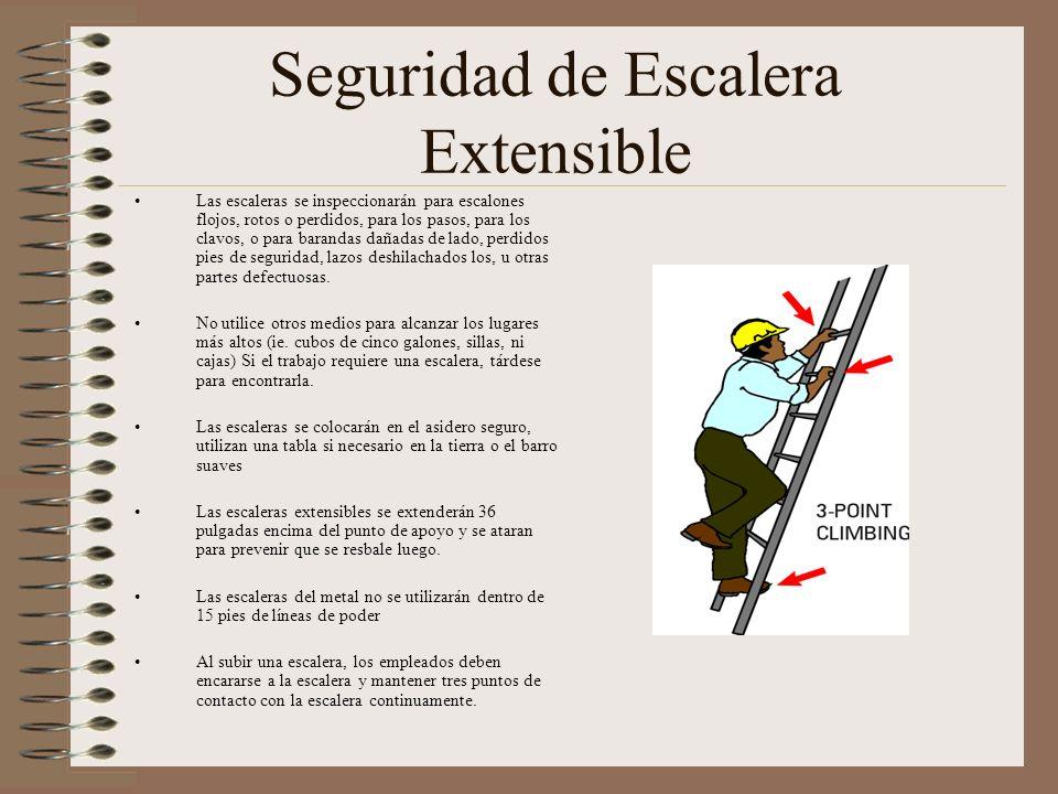 Seguridad de Escalera Extensible Las escaleras se inspeccionarán para escalones flojos, rotos o perdidos, para los pasos, para los clavos, o para barandas dañadas de lado, perdidos pies de seguridad, lazos deshilachados los, u otras partes defectuosas.