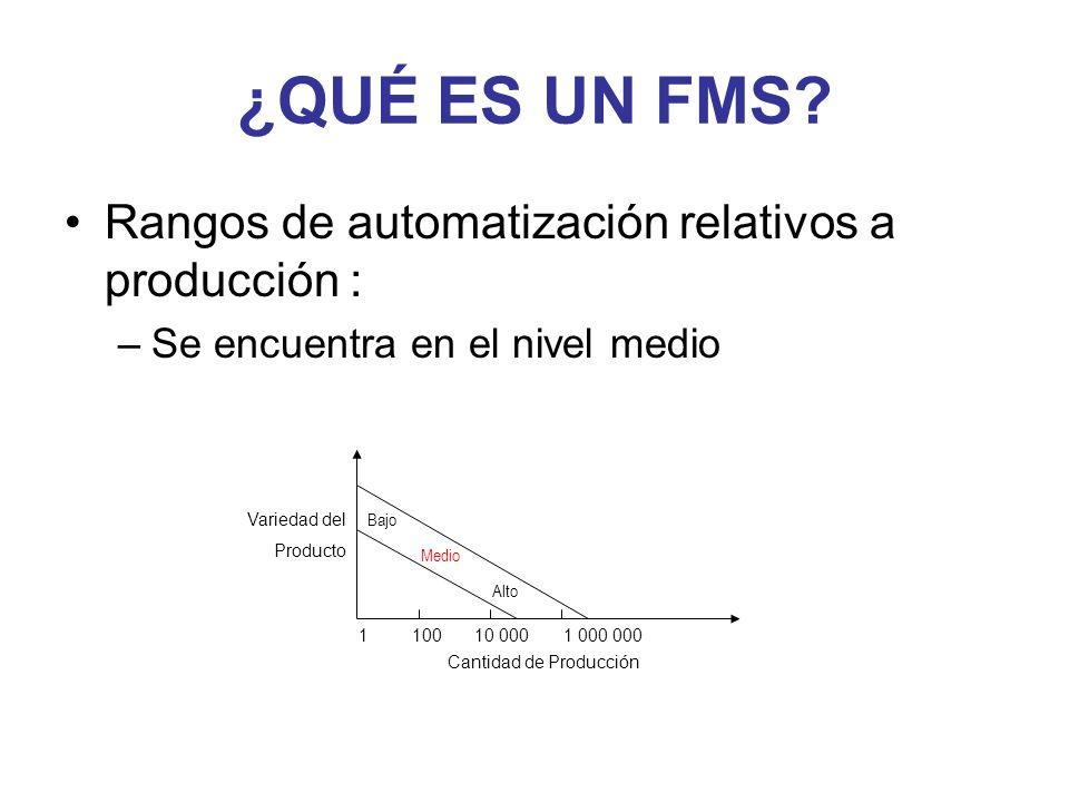 ¿QUÉ ES UN FMS? Rangos de automatización relativos a producción : –Se encuentra en el nivel medio Variedad del Producto 110010 0001 000 000 Cantidad d