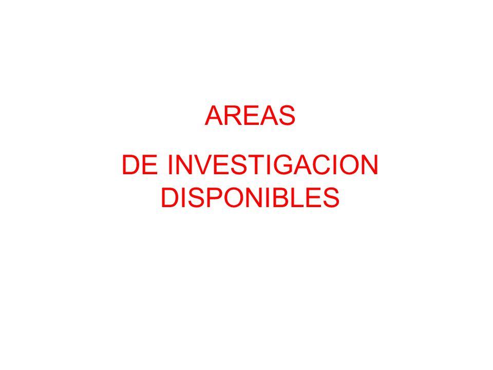 AREAS DE INVESTIGACION DISPONIBLES