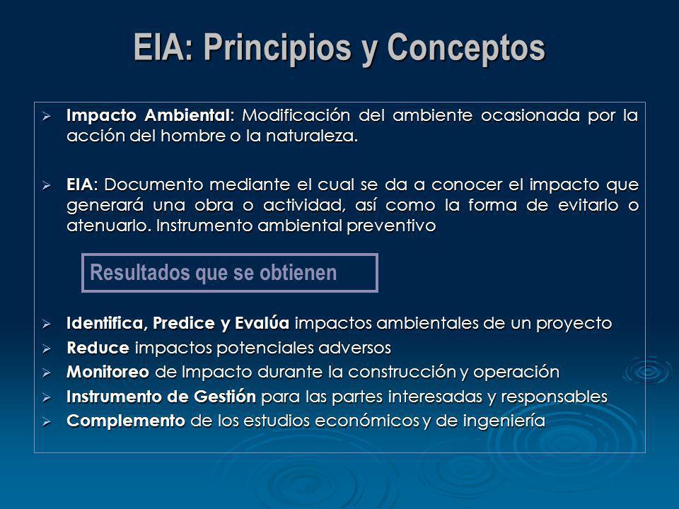 EIA: Principios y Conceptos Impacto Ambiental : Modificación del ambiente ocasionada por la acción del hombre o la naturaleza. Impacto Ambiental : Mod